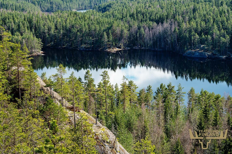 repovesi finland